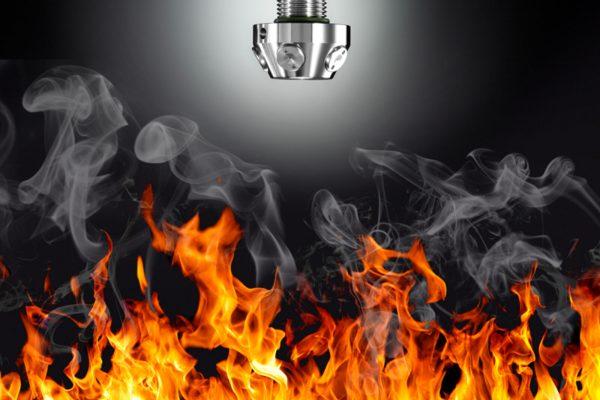 MJTE211-Brandbeheersing-48913-MJ-tech9608-1-Vuur